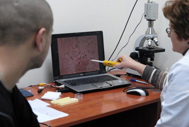 Термины в спермограмме