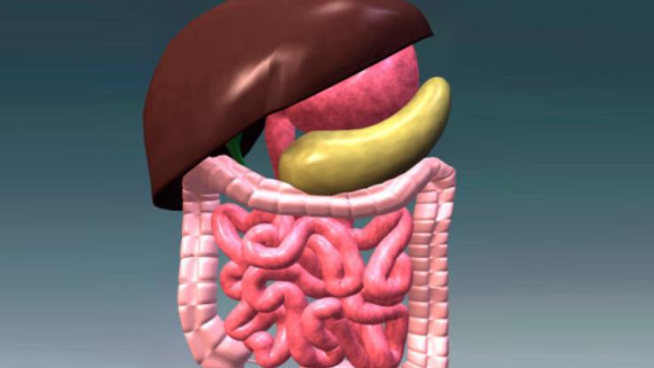 Заболевание пищевода