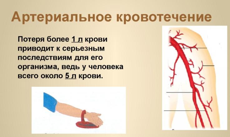 Как действовать при больших кровопотерях