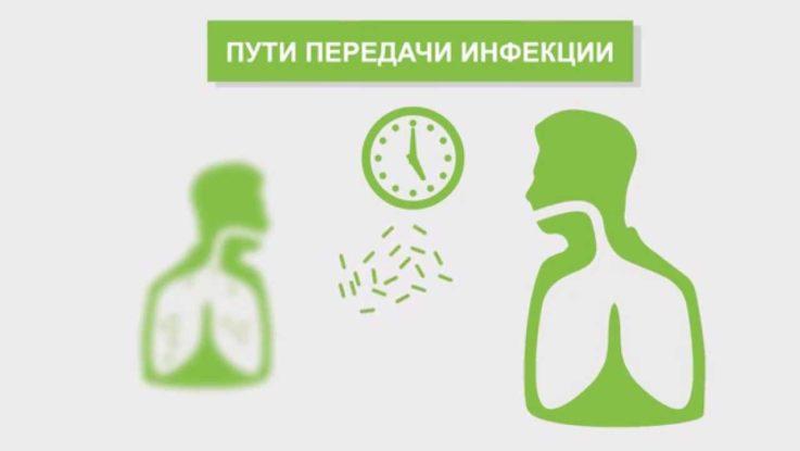 Патогенез и основные причины менингита