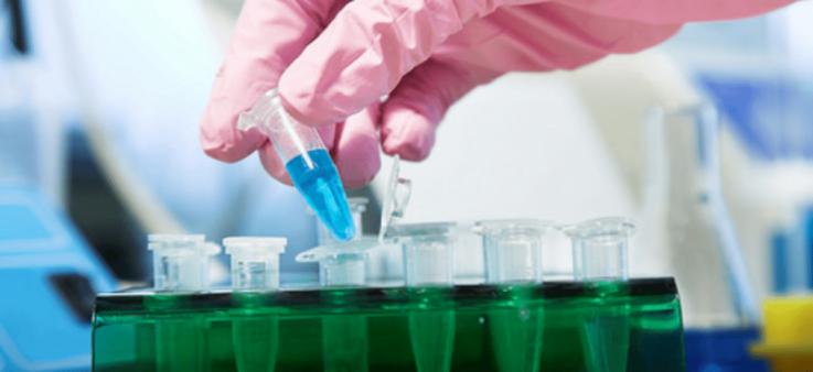 Значение церулоплазмина для клинической диагностики