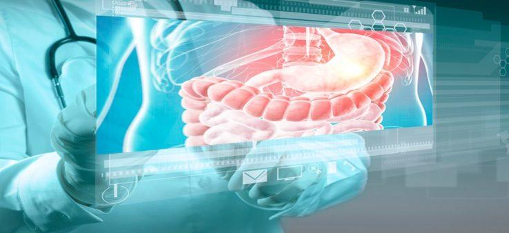 В каких отраслях медицины гистология имеет большое значение