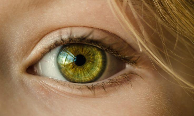 Механизмы нарушения зрения